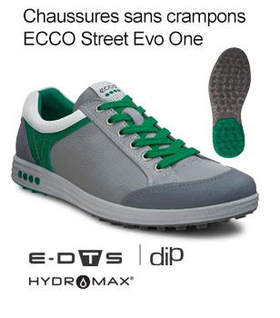 Ecco Shoe 3
