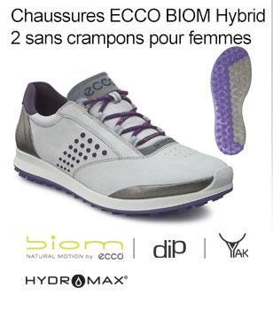 Ecco Shoe 1